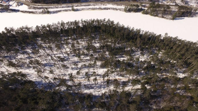 Aerial view of Pine Park