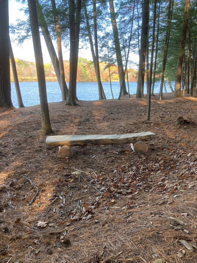 new log bench